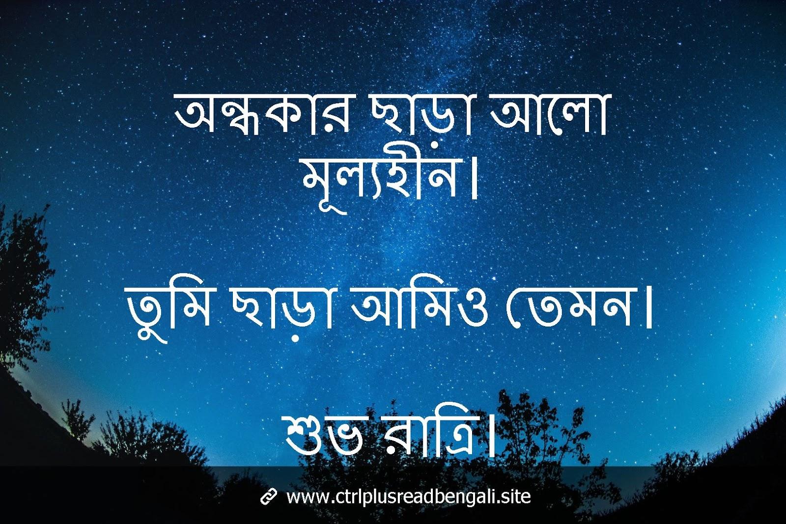 bengali good night shayari
