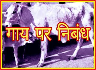 गाय पर निबंध | Cow Essay in Hindi, gay ka nibandh, about cow in hindi