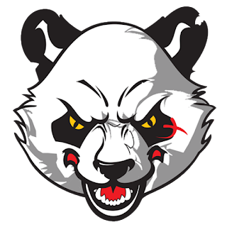 Logo DLS 2017 panda