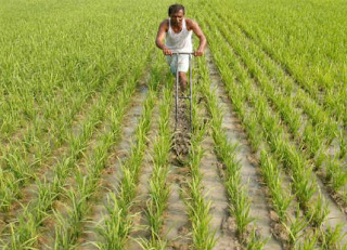 Rs.17,793 crore Under PM-KISAN Scheme—BY GOI