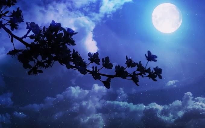 Oración a la luna para poder conseguir energía (todos los signos)