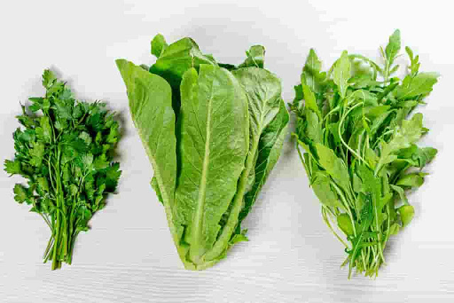 Romaine Riddle