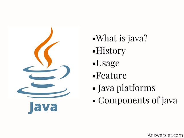 Java Programming Language: Usage, History, Platforms, Components