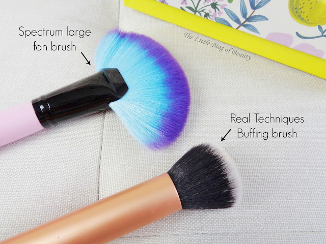 Spectrum Collections Large Fan brush