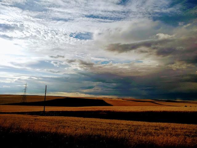 campos de castillas