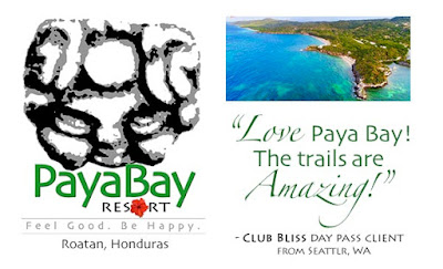 #payabay, #payabayresort, client feedback, good energy, love, paya bay resort, quotes,