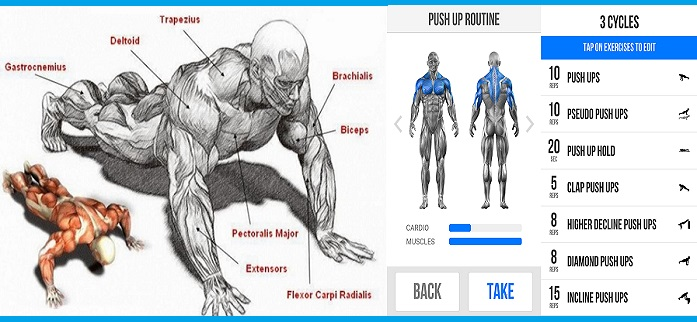 How To increased your Pushups Workout