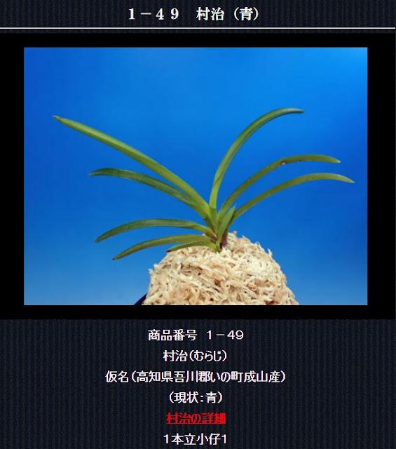 http://www.fuuran.jp/1-49.html