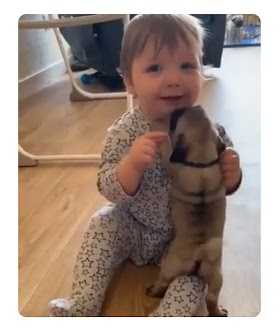 Baby And Puppy – So Cute!