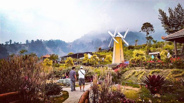 Tiket Masuk Dan Lokasi Merapi Garden Boyolali Jawa Tengah