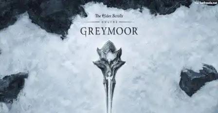 The Coven Conspiracy / Greymoor