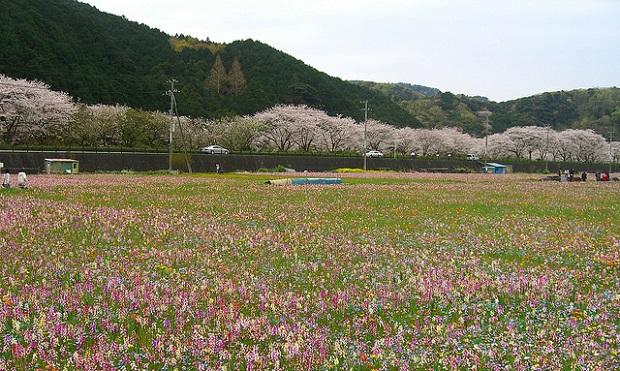Tanbo Wo Tsukatta Flower Garden