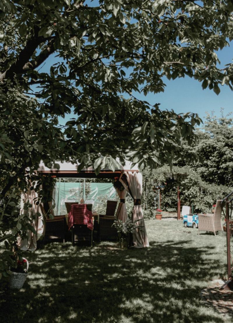 ogród u babci