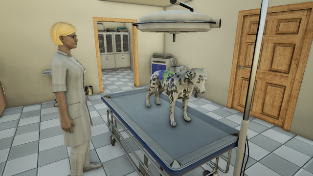 Animal Doctor Game