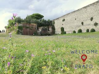 Immagine del Bastione San Giusto con mura di Prato