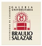 Salon, Arte, Cultura, Valencia,