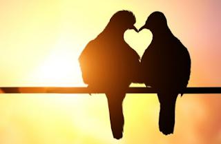 https://www.katabahasainggris.com/2018/09/20-kata-kata-cinta-dalam-bahasa-inggris-dan-artinya.html