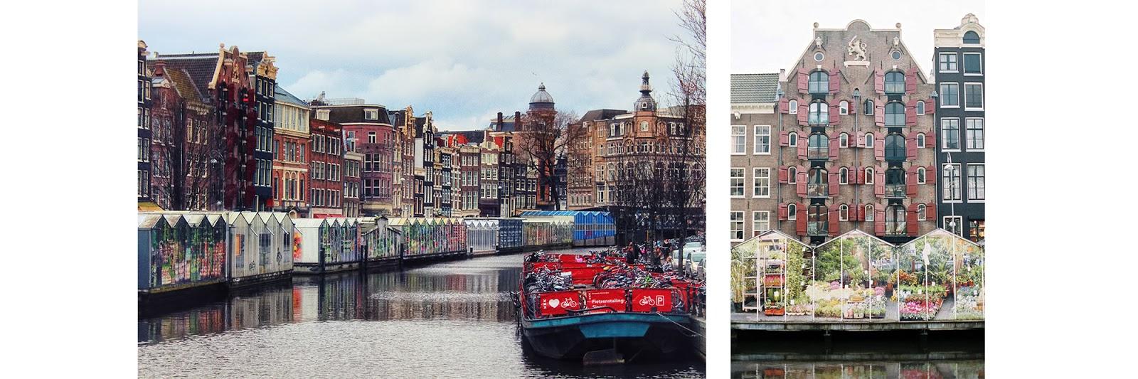 Fabuleux Voyages Livresques | Amsterdam | Nos étoiles contraires | Mydeerbooks KQ26