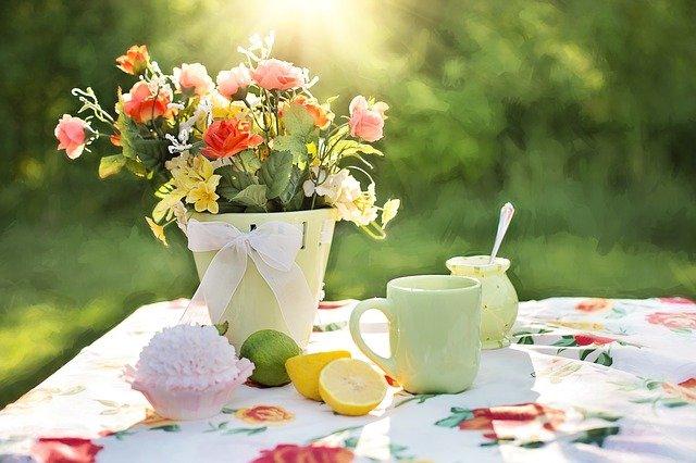 Le brumisateur de jardin pour profiter au maximum de l'été