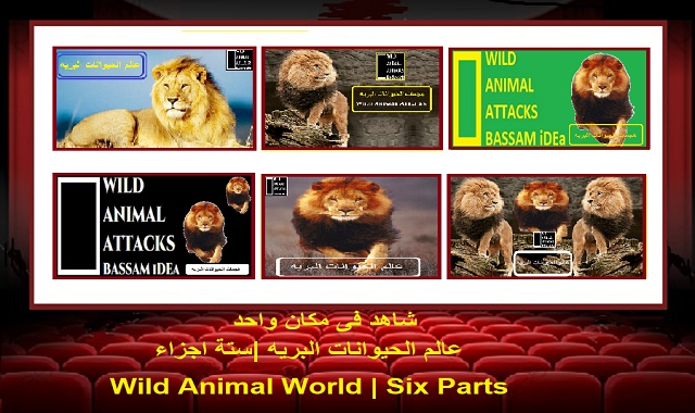 عالم الحيوانات البريه |ستة اجزاء| Wild Animal World | Six Parts