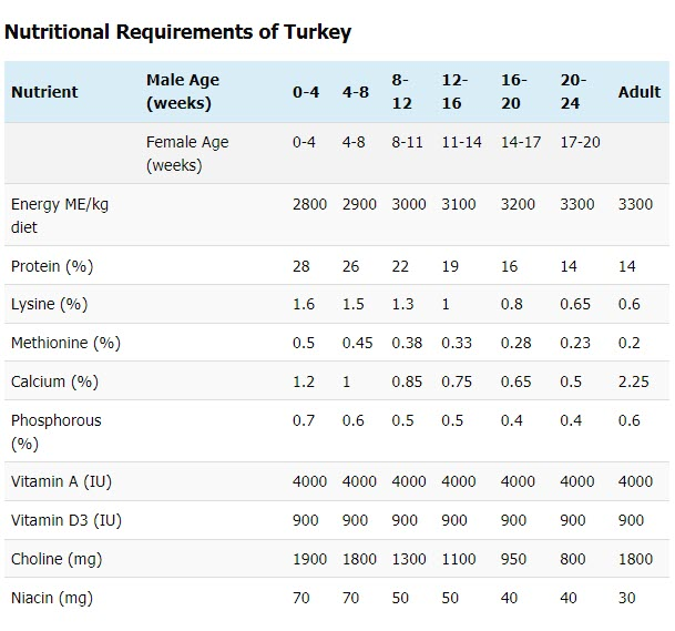 Nutritional requirement of turkey