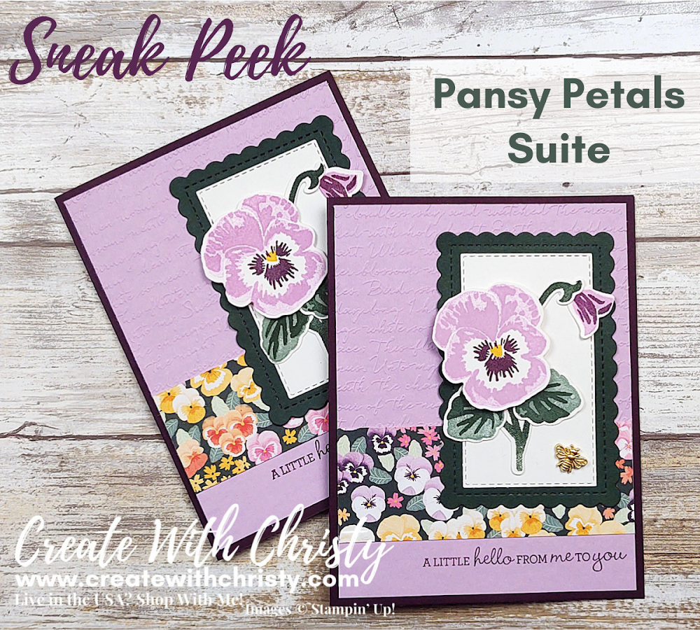New Annual Catalog Sneak Peek - Pansy Petals Suite