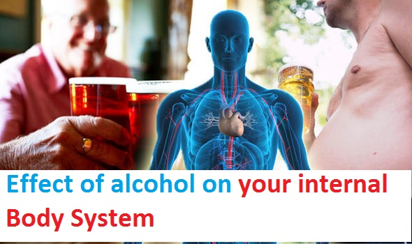 Effect of alcohol on your internal Body System.