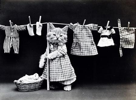 mencuci baju adalah pekerjaan rutin yang membosnkan