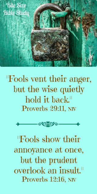 Fools, Anger, And Repentance - Proverbs 28:13