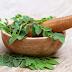 Banyak Manfaat, 3 Tanaman Herbal Indonesia Ini Efektif Jaga Daya Tahan Tubuh