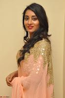 Bhanu Shri looks stunning in Beig Saree choli at Kalamandir Foundation 7th anniversary Celebrations ~  Actress Galleries 022.JPG