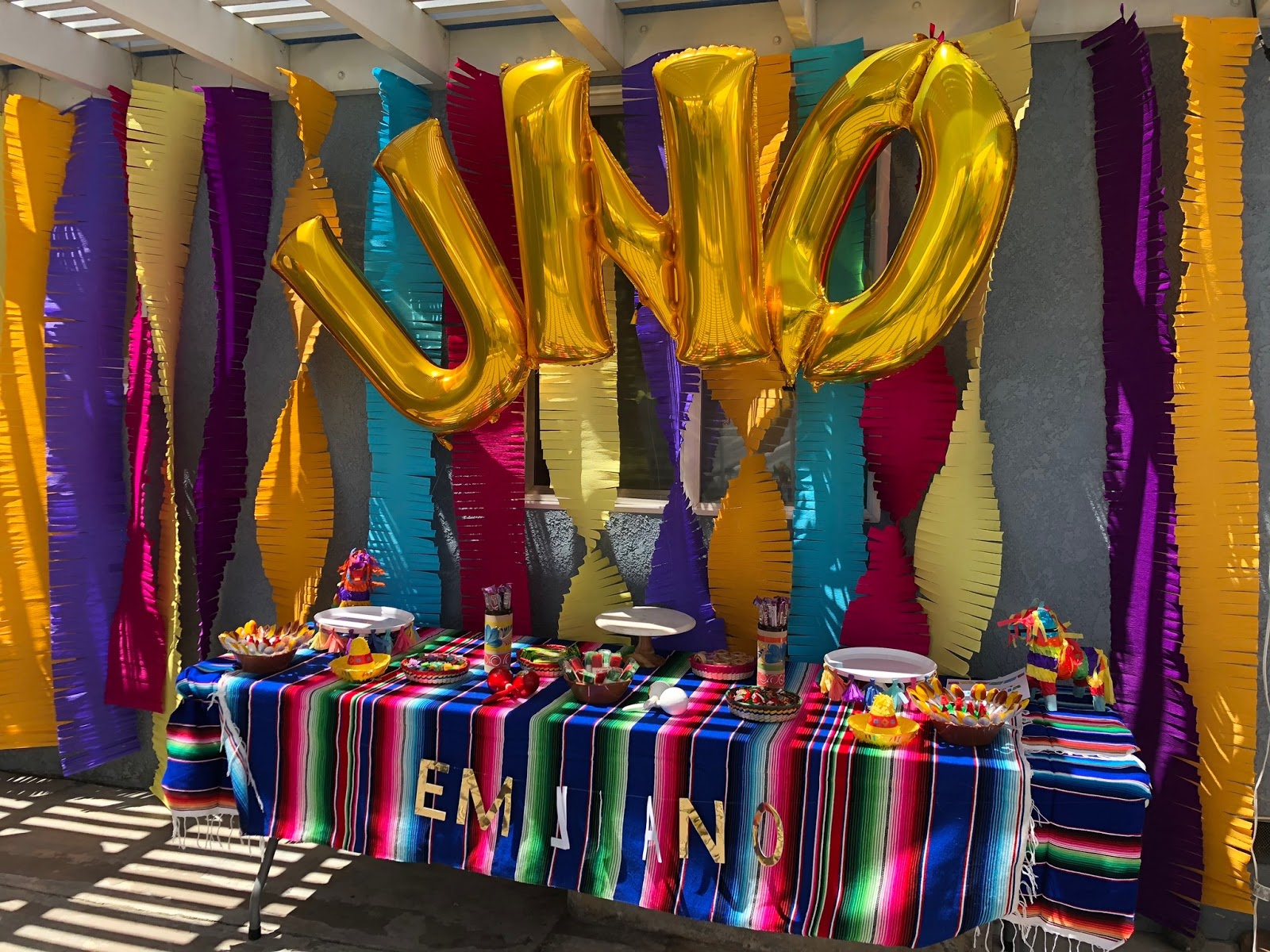Priya the Blog, Nashville lifestyle blog, Nashville lifestyle blogger, Summer 2019, Summer travel, first birthday party, first birthday fiesta, Southern California travel, Florida travel