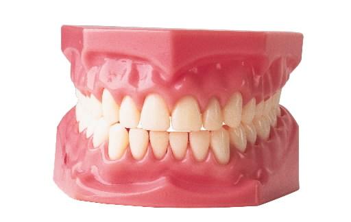 Cara Memutihkan Gigi Palsu Cara Memutihkan Gigi