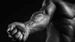 forearm by bodytrick
