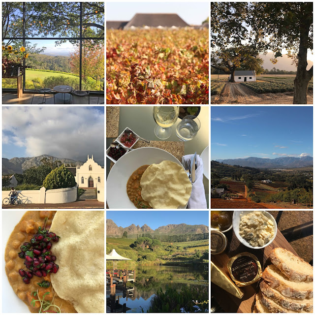 Winelands - Franschhoek, Constantia and Stellenbosch. Tokara. Hidden Valley. Paul Cluver