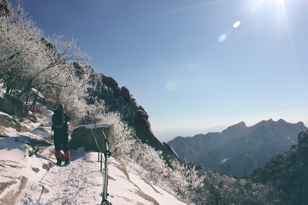 Reasons you should travel Korean New year 2020 days