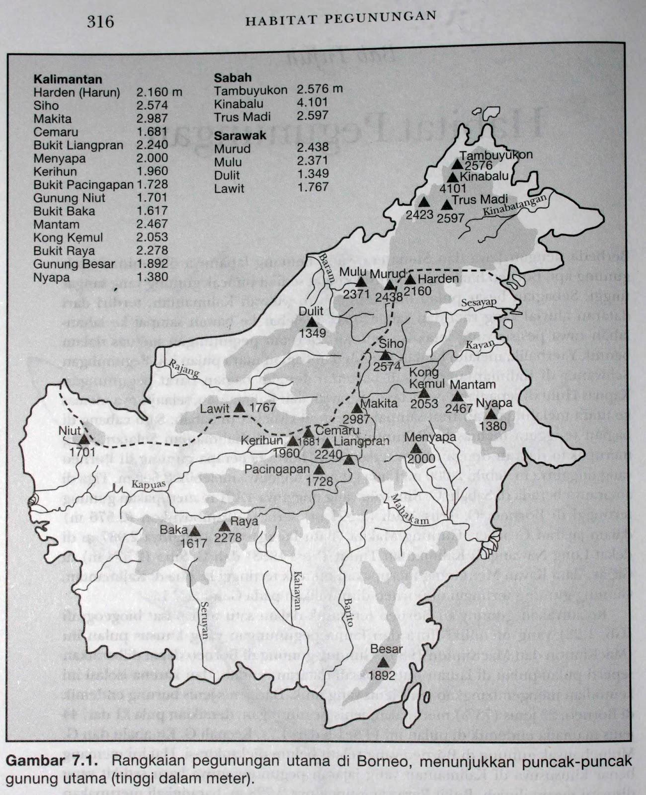Peta Kalimantan Hitam Putih : kalimantan, hitam, putih, Gunung, Makita, Puncak, Pulau, Kalimantan, BorneoScape