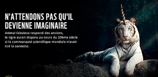 Campagne sur les espèces menacées de WWF sur Réflexion Durable
