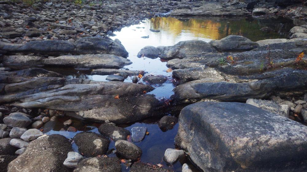 Whites Creek