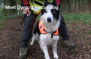 http://www.bbc.com/news/av/uk-england-hereford-worcester-43993207/abandoned-puppy-turns-rescue-dog-in-worcestershire