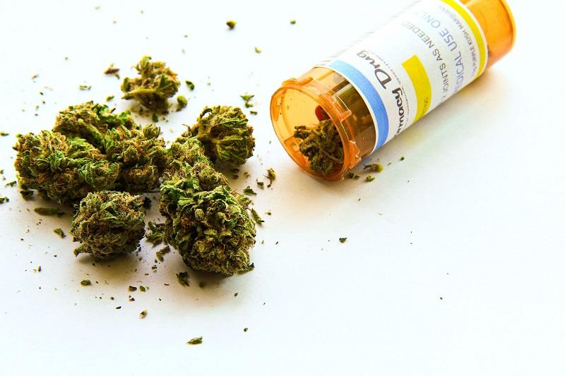 Maconha Medicinal (Cannabis Medicinal)