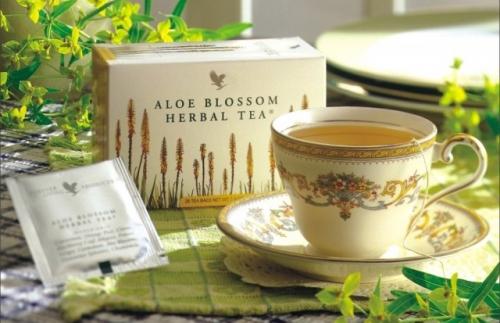 ALOE VERA u svakodnevnoj ishrani i nezi tela: Aloe Blossom ...