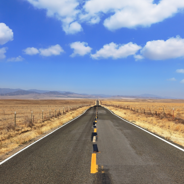 Homeward Bound July 14: God's Ideal