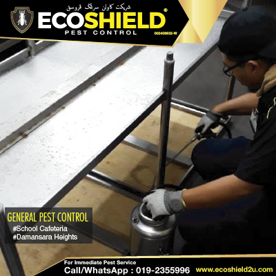 General Pest Canteen | Pest Control Selangor | Pest Control KL