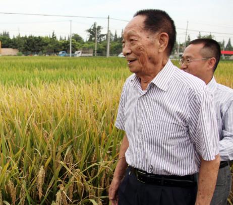 En China siguen los homenajes a Yuan Longping, padre del arroz híbrido