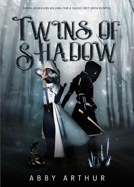 Twins of Shadow book cover