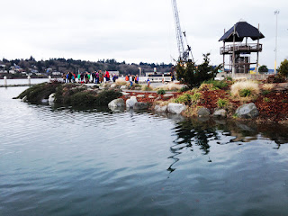 During King Tide, visitors to Olympia's Port Plaza gaze at the abundance of water flowing in from Puget Sound.