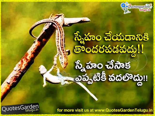 Best Friendship Quotations in Telugu for close friends - Quotes Garden Telugu