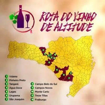 Vinhos de Altitude de Santa Catarina ganham Indicação de Procedência