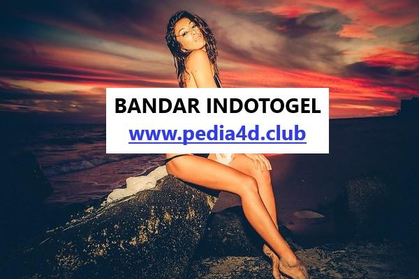 Menatap Lebih Dekatt Situs Indotogel